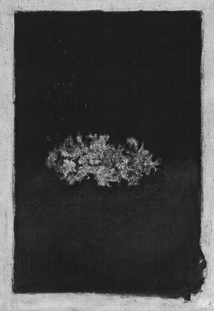 charcoal, drawing, flower, abstract